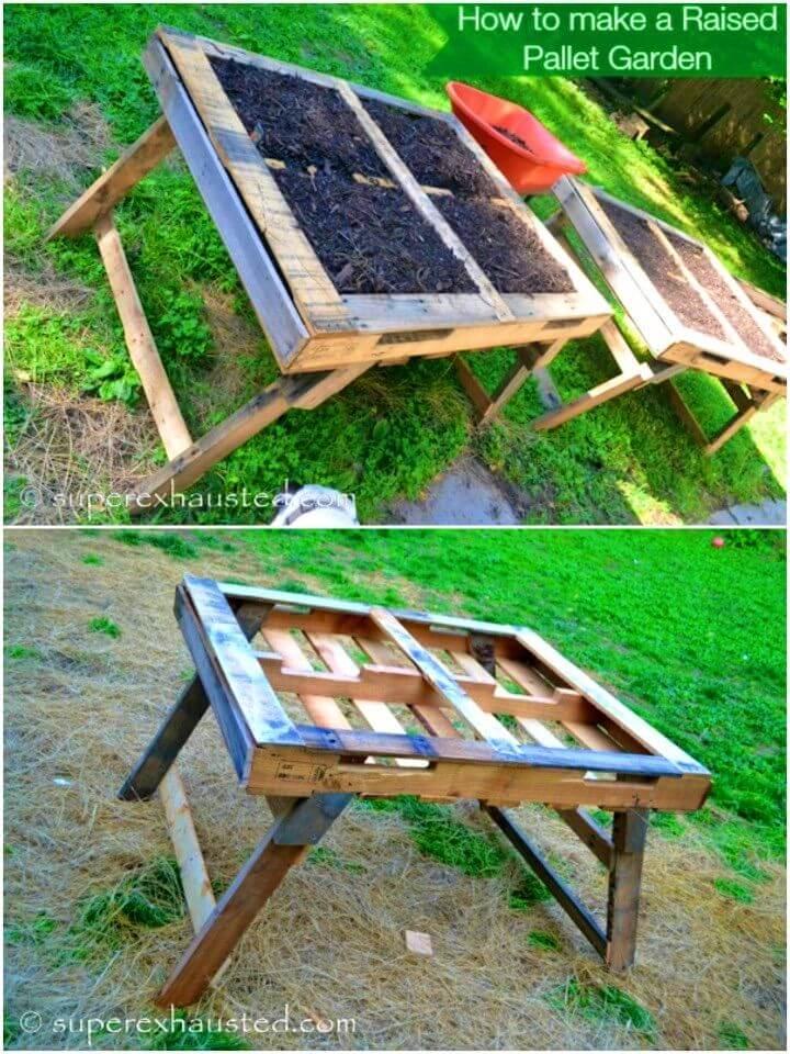 Build Raised Pallet Garden Beds