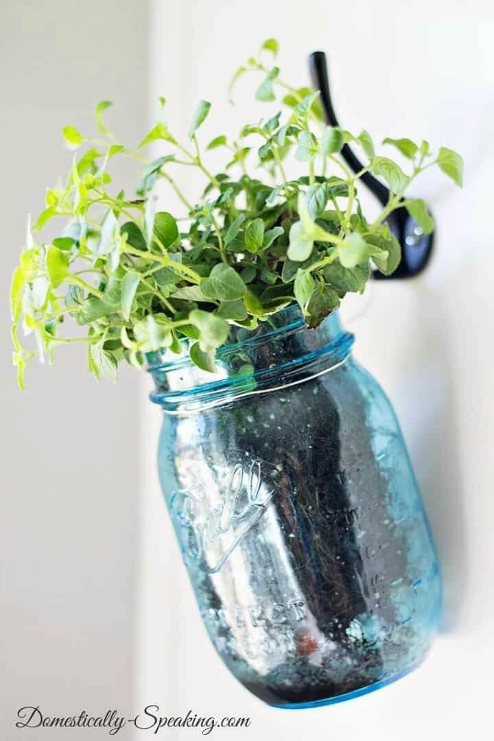 DIY Hanging Herb Mason Jars