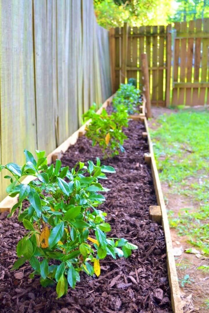 DIY Raised Garden Beds for Backyard