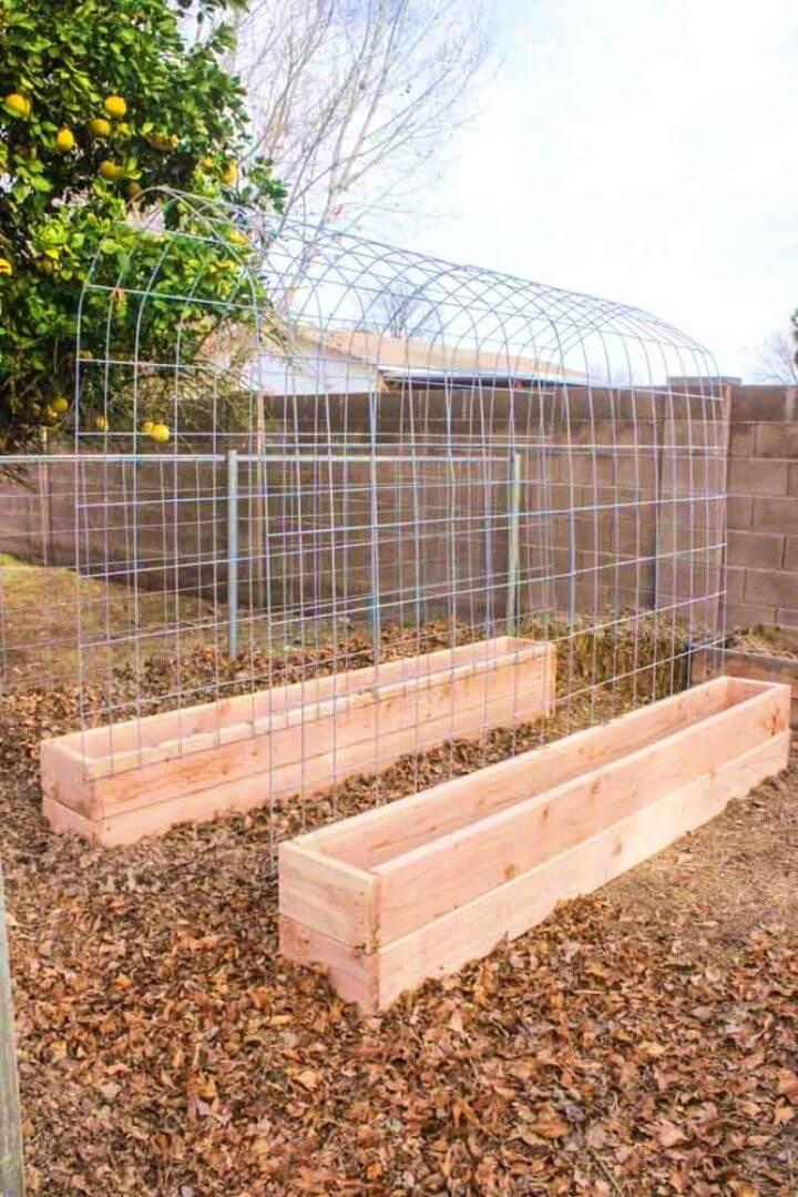 DIY Trellis Raised Garden Box Combo