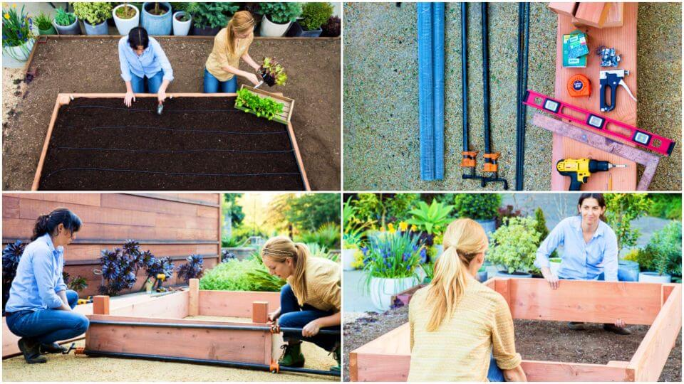 DIY the Ultimate Raised Bed