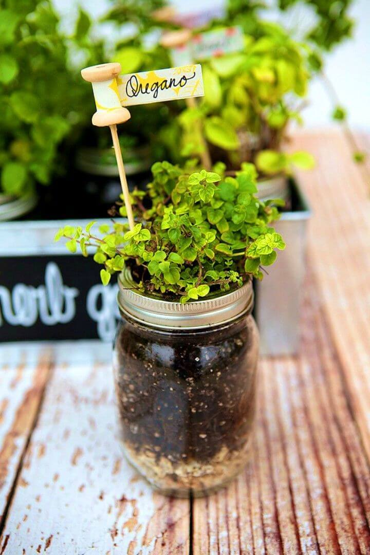 Easy DIY Herb Garden and Plant Markers