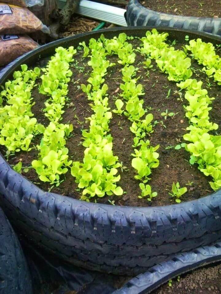 How to Make Tired Raised Garden