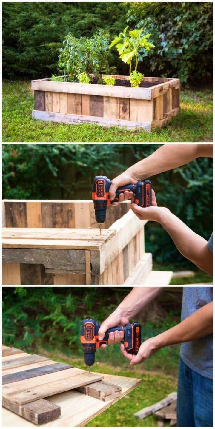 Inexpensive DIY Raised Garden Bed