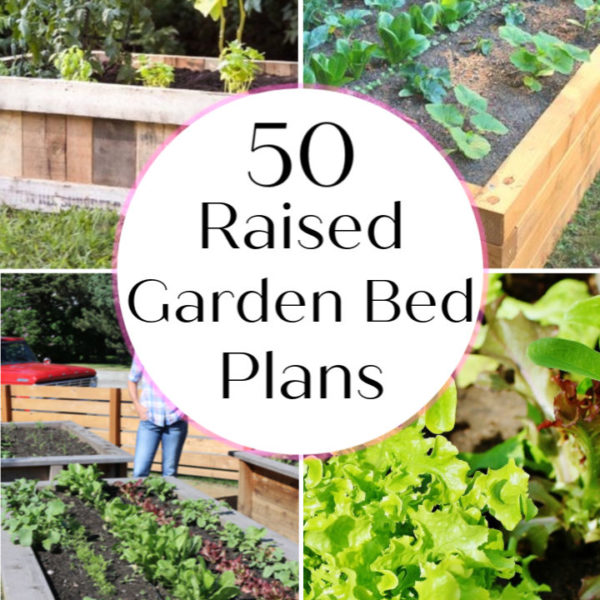 Raised Garden Bed 50 Plans To DIY Your Own Garden Bed garden box plant bed making a raised garden bed 1