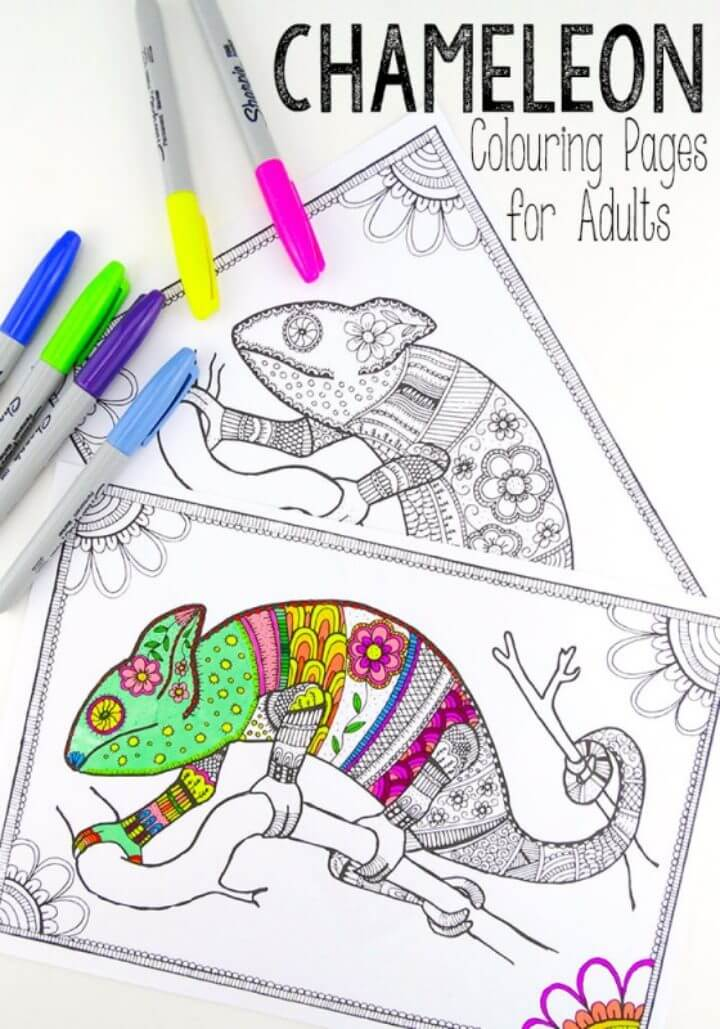 Colouring Pages for Grown Ups – Chameleons
