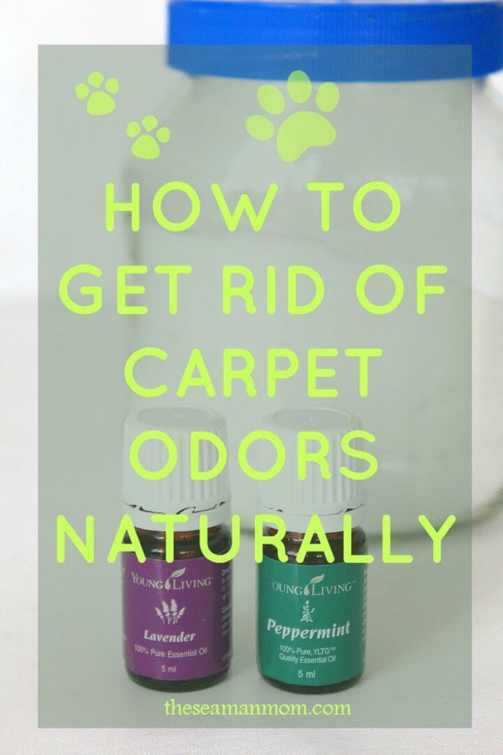 How to Remove Carpet Odor