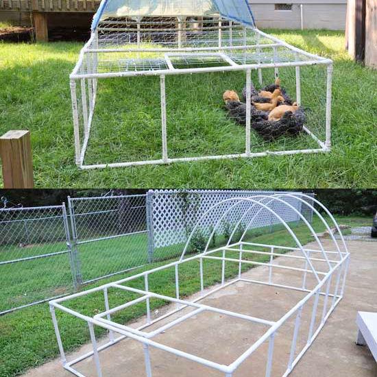 10 DIY PVC chicken tractor plans