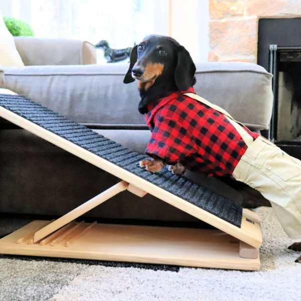 15 Free DIY Dog Ramp Plans For Bed Car Couch Stairs