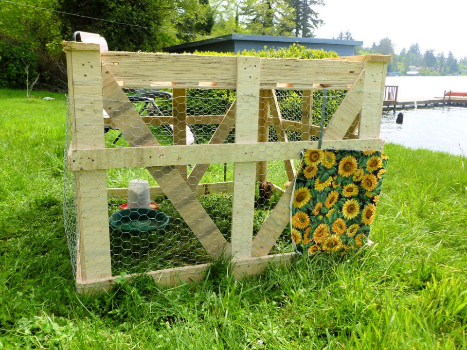 20.00 Chicken Tractor and Coop