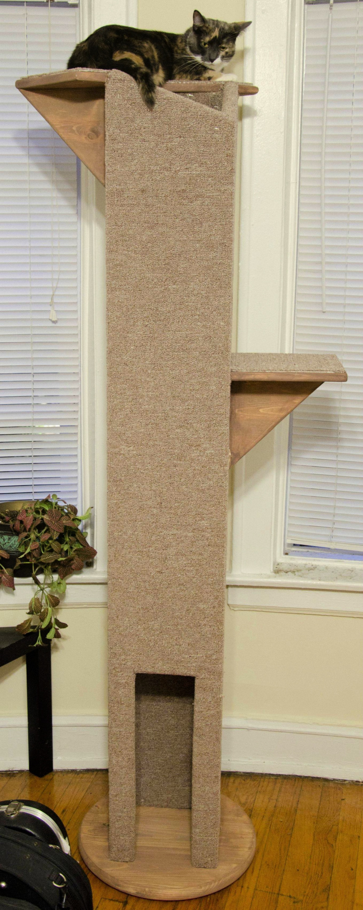 6 Feet Tall Cat Tower Plan