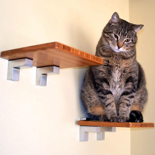 Best DIY Cat Shelves To Build for Your Feline Friend