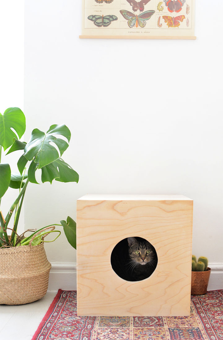 Build a Wood Cat House to Sell