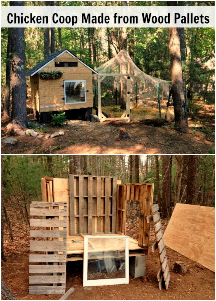 Chicken Coop from Recycled Wood Pallets