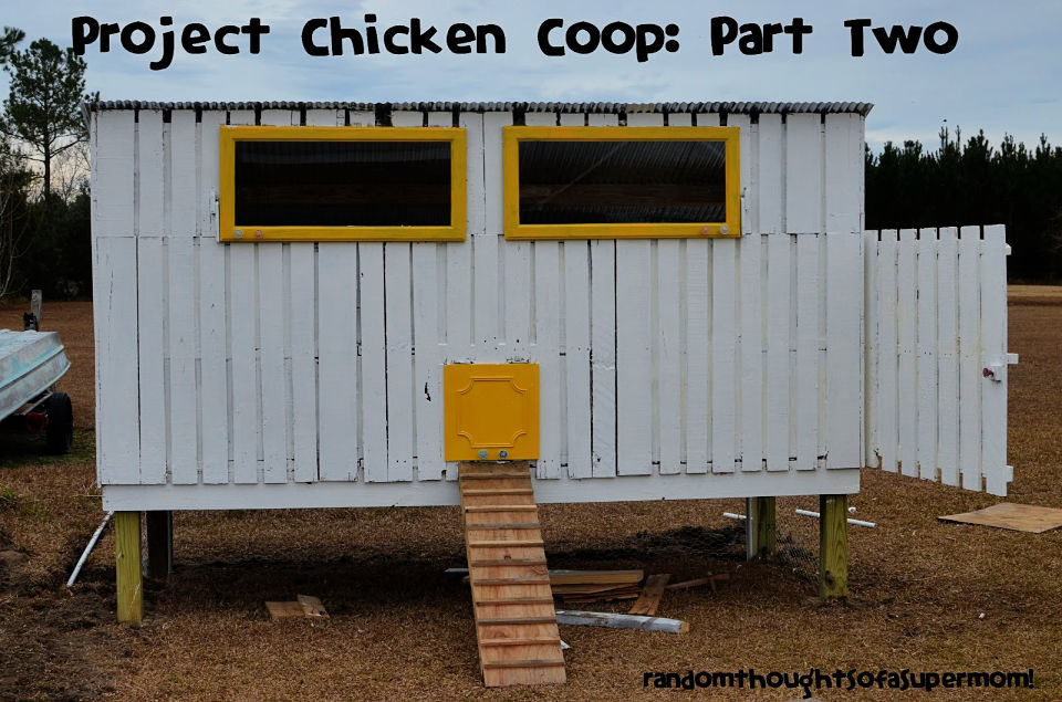How to Make a Pallet Chicken Coop