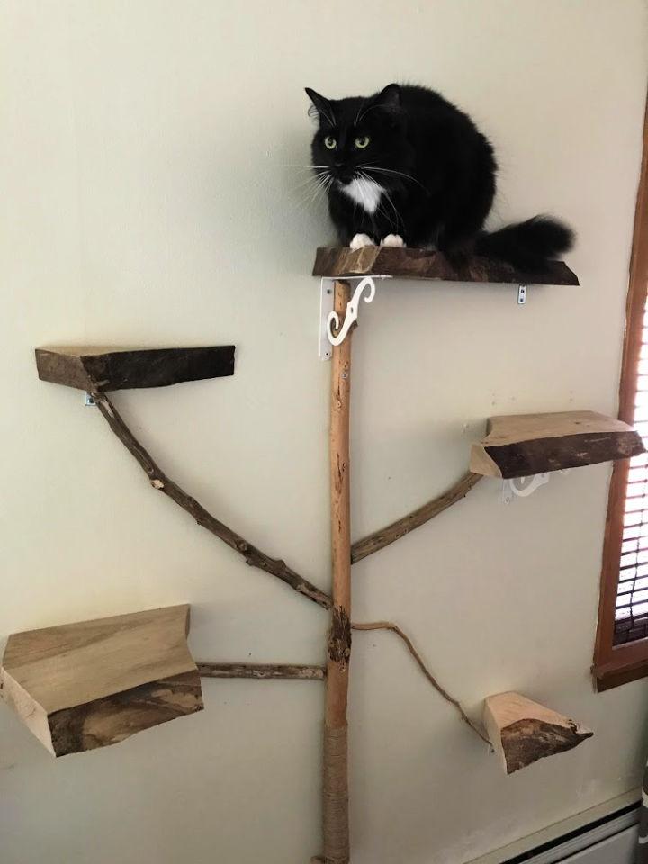 Live Edge Wood Shelf Wall Cat Tree