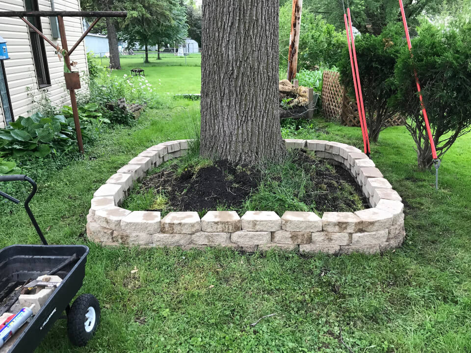 Retaining Walls Around Trees