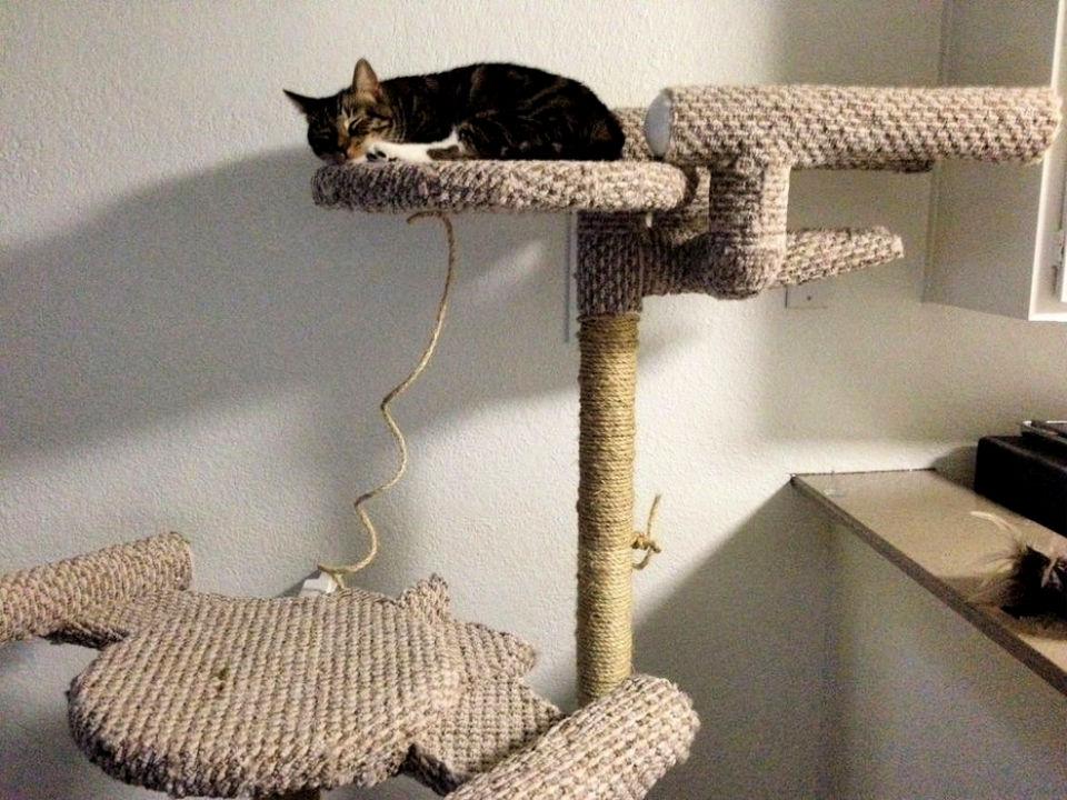 Star Trek Cat Tree