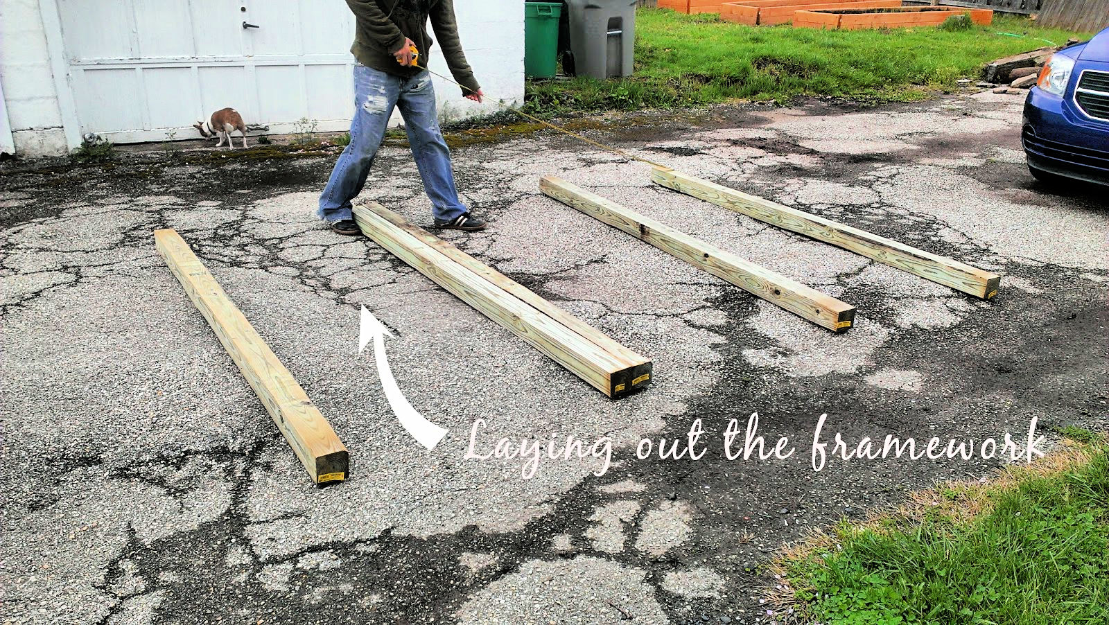 laying out chicken coop framework