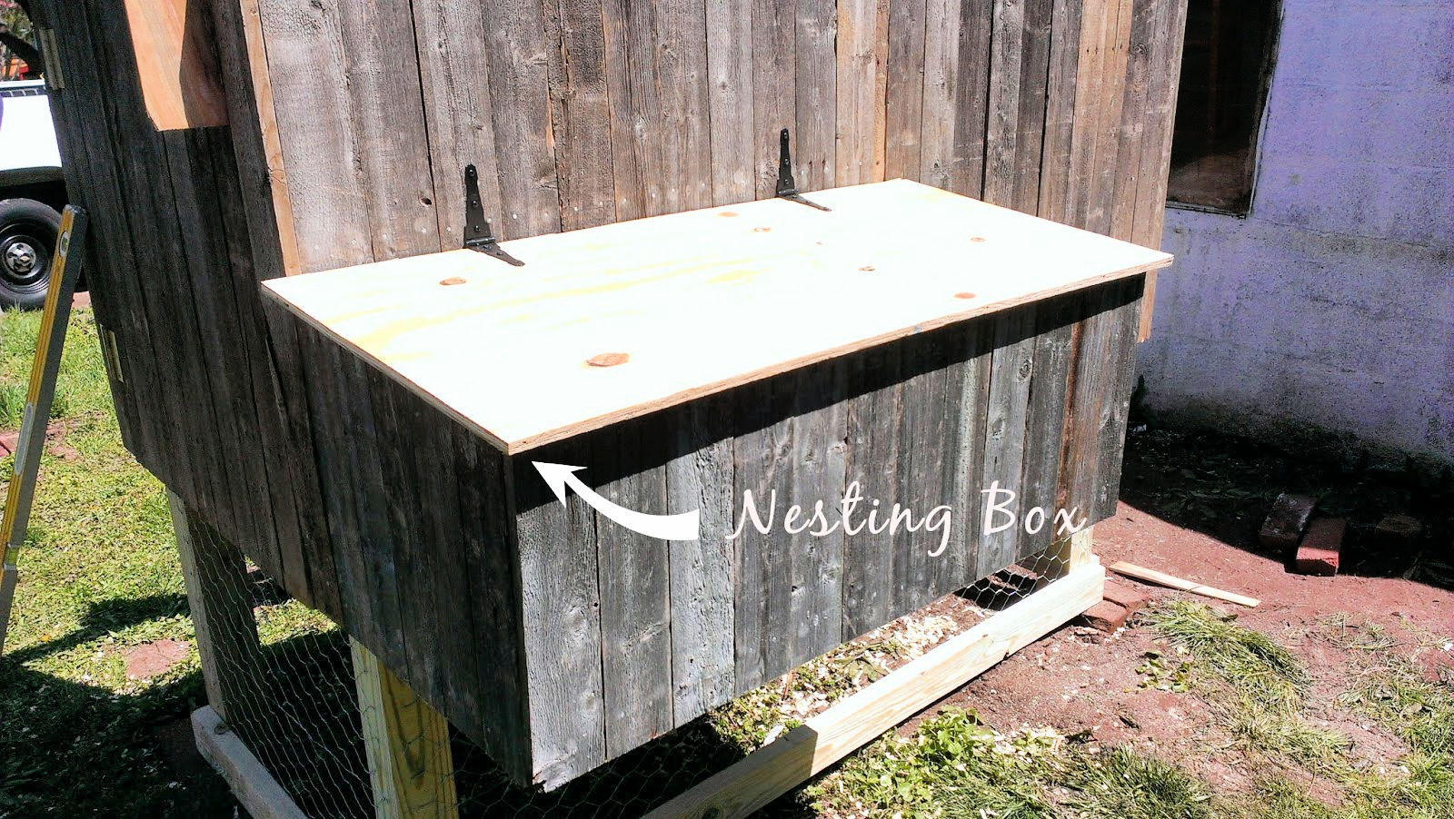 nesting box was also paneled
