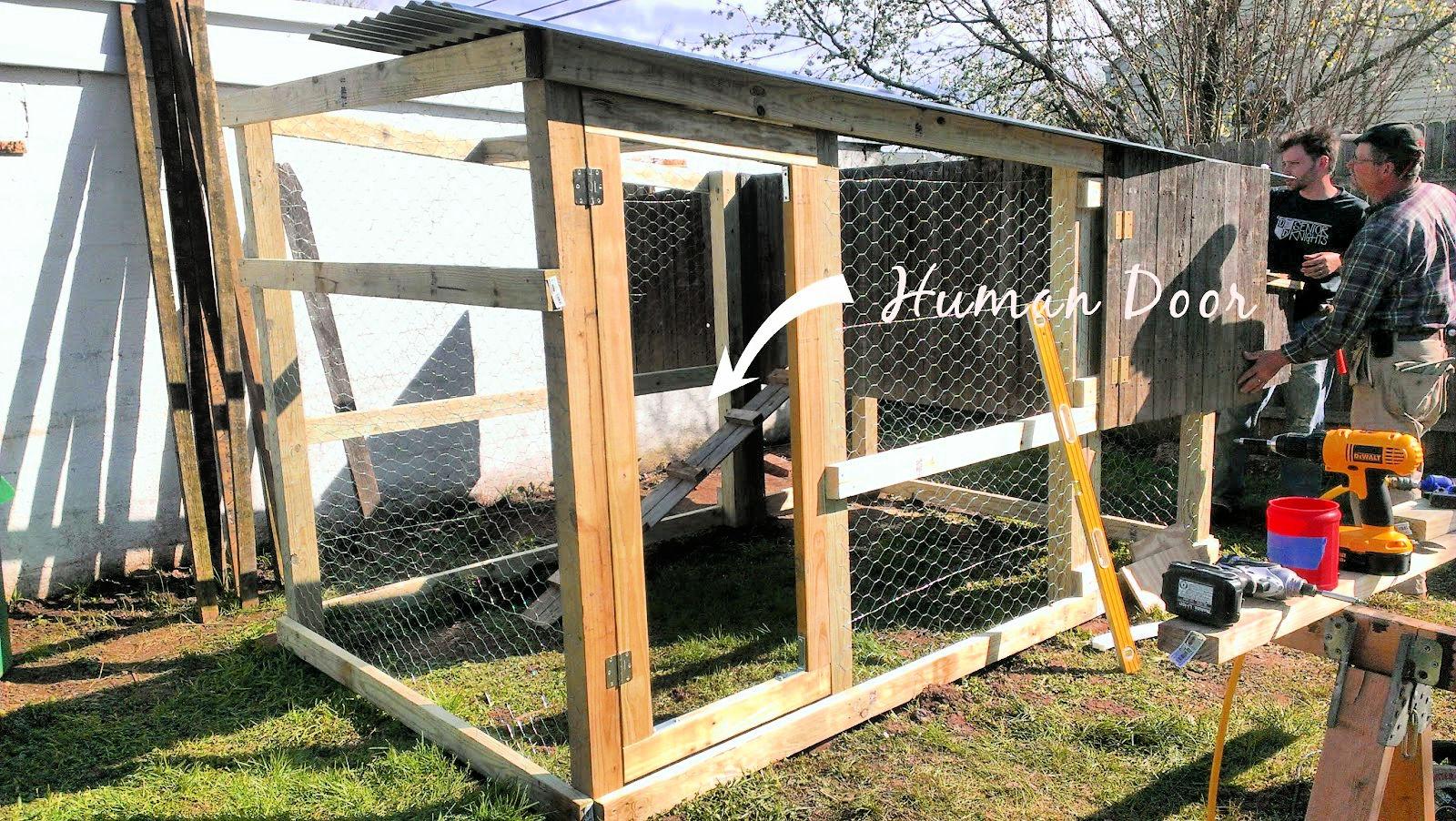 walk in chicken coop door also added