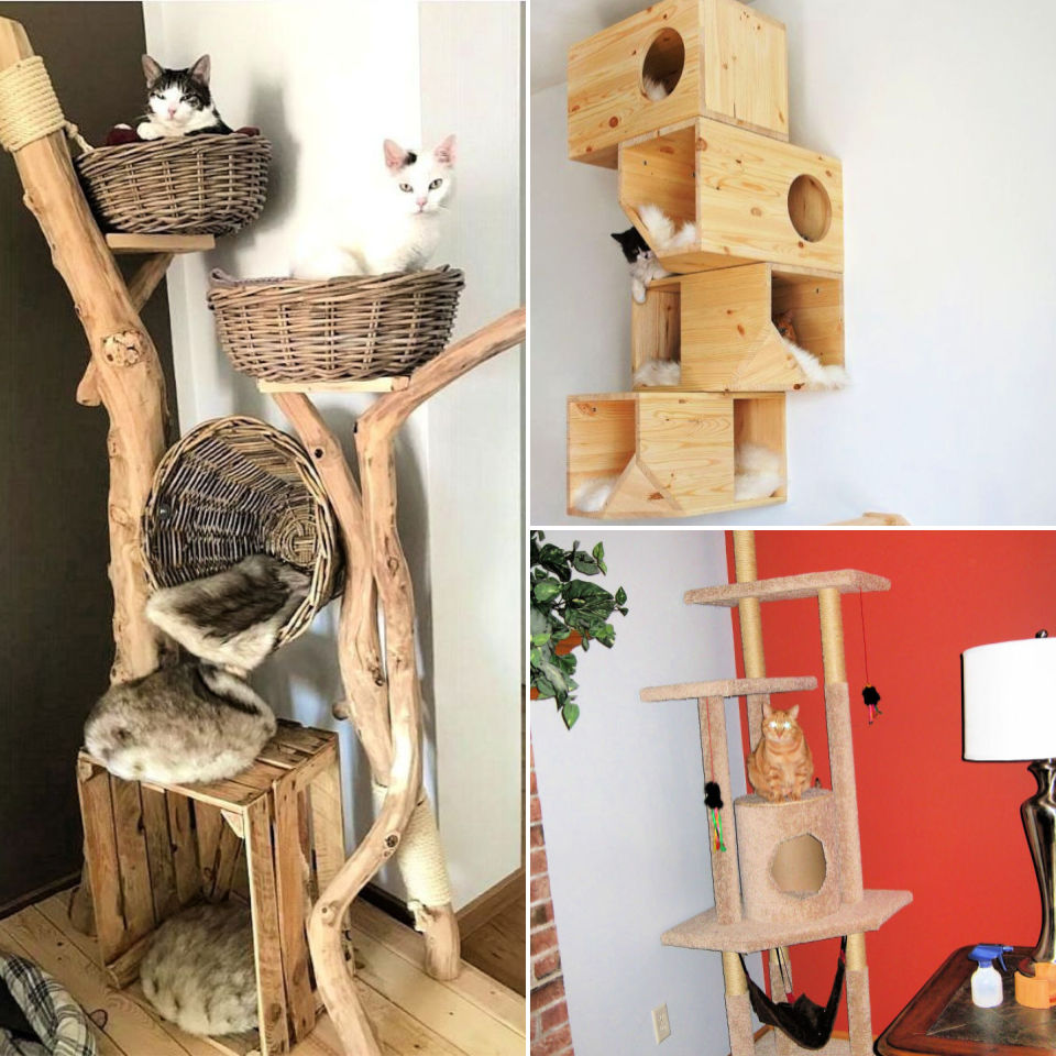 20 Free DIY Cat Tree House Plans and Ideas